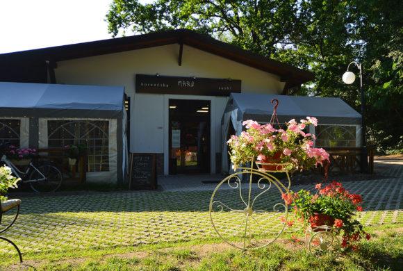 Restauracja NARU SHUSHI